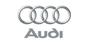 Partner-Audi